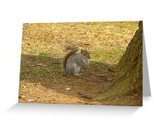Just snacking ! Greeting Card