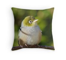 Hi My name is Ted, whats your's? - Silvereye - Wax Eye - New Zealand Throw Pillow