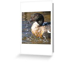 Duck Wash Greeting Card