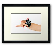 Close up of a dancer's hand holding a castanet Framed Print