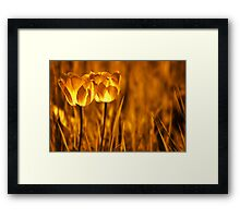 In a perfect world.... Framed Print