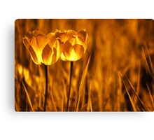 In a perfect world.... Canvas Print