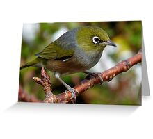 Time to Think! - Silvereye - NZ - Southland Greeting Card