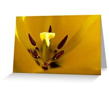 Heart of the Tulip - Yellow Tulip - NZ - Southalnd Greeting Card