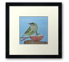 Bellbird Oil Painiting - Southland New Zealand Framed Print