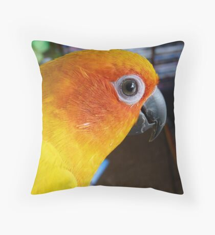What can I say! - Sun Conure - NZ ** Throw Pillow