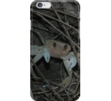 Crab, Royal National Park, Australia 2007 iPhone Case/Skin
