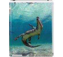 Dangerous Approach iPad Case/Skin