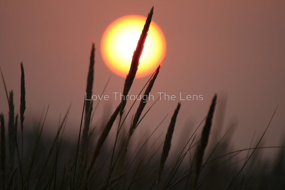 Serenity by Love Through The Lens