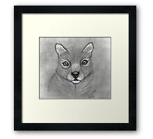 ~*~Chance~*~ 'Can I Live Here Too?' Series Framed Print