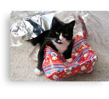 Christmas is for Cats Canvas Print