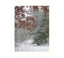 Winter Colors Art Print
