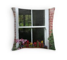 The Window And The Window Beyond Throw Pillow
