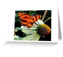 Beauty and the Peace Greeting Card