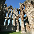 Abbey Ruins Whitby by Larry149