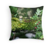 Ferny Branch & Red Berries Throw Pillow