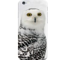 Female  Snowy Owl (Bubo scandiacus) iPhone Case/Skin