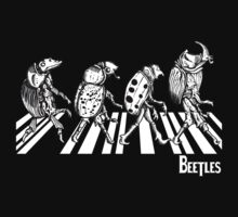 BEETLES by ZugArt