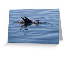 Duckdive Greeting Card
