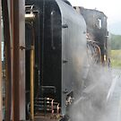 NG143 Locomotive Through the Steam by Larry149