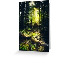 Down the dark ravine Greeting Card