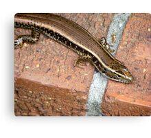 Lizard Friend Canvas Print