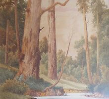 Wyong Creek by Gladstone-Eyre by Maximus
