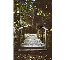 Bridge over troubled waters Photographic Print