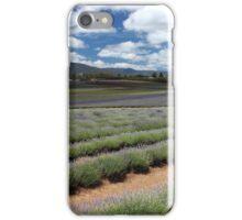lavender farm at Nabowla iPhone Case/Skin