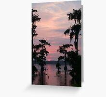 Lake Martin Swamp Greeting Card
