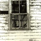 Window by salwa