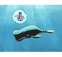 Whale Christmas wish Photographic Print