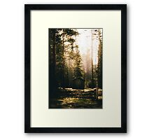 Honey Im home! Framed Print