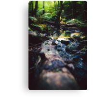 Logged on Canvas Print