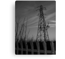 Pyles of fence Canvas Print