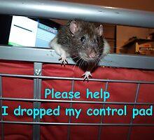 gamer rat by mindgoop