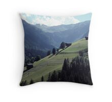 In the Valley of the Lesach River Throw Pillow