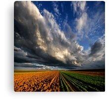 Power To The Sky Canvas Print