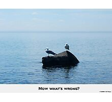 NOW WHATS WRONG ? Photographic Print