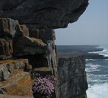 Aran Island by weesha