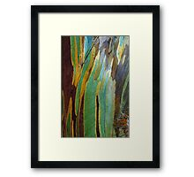 Snow Gum Bark Framed Print