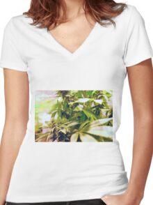 Skunk marijuana plants (Cannabis sativa) being grown in pots Women's Fitted V-Neck T-Shirt