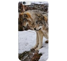 We three Kings.... iPhone Case/Skin