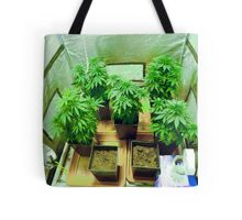 Home Grown Cannabis plants.  Tote Bag