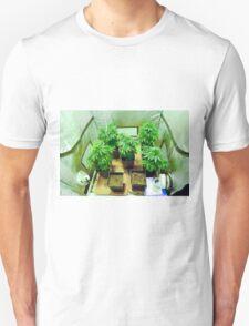 Home Grown Cannabis plants.  T-Shirt