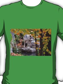 Timber Wolf by Pond T-Shirt