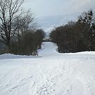 Nagano, Japan - Snowboarders heaven 2 by AndrewLouis