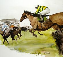 The Final Furlong by john dolan