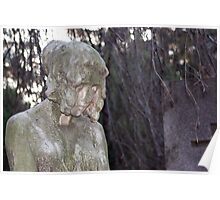 weeping willow and girl Poster