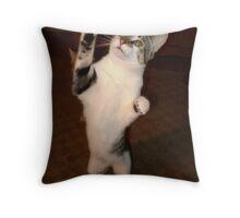 the paw pledge Throw Pillow
